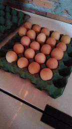 Ovos de galinha caipira(fresquinhos) 30 ovos