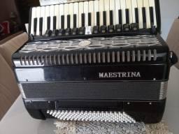 Sanfona maestrina