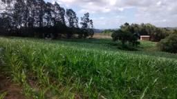 Vendo 2 lindas hectares