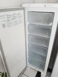 Freezer Vertical Electrolux FE22