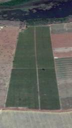Chácara irrigada na Beira do Lago
