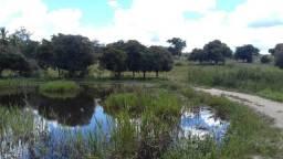 Fazenda em Minas 347 hectares
