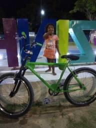 Bicicleta labrador