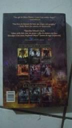 Cidade do fogo celestial (livro)