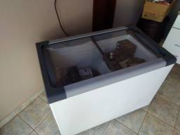 Freezer Metalfrio NF30SB