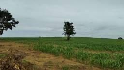 Fazenda de 297 hectares no DF com dupla aptidão