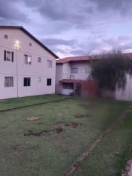 Alugo um apartamento no Buena Vista