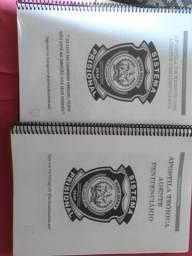 Vendo 2 apostilas preparatórias para agente penitenciário (IPATINGA)
