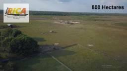 Fazenda as margens da BR319 a venda