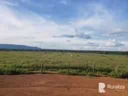 Fazenda para pecuária e com alto potencial agrícola no Sul do Pará