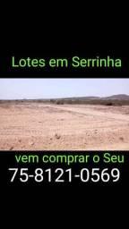 Lotes em Serrinha