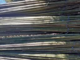 Bambu estaca de tomate