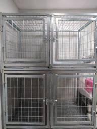Canil / Gaiolas para pet e clínica