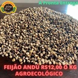 Feijão Andú Agroecológico a Pronta entrega, estoque de 60kg
