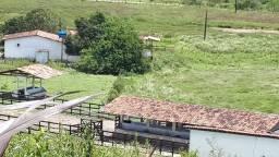 Sitio 21 hectares toda pronta com muita água