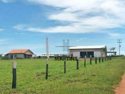 Fazenda - Bataguassu - Mato Grosso do Sul