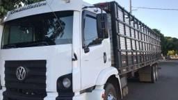 Caminhão boiadeiro 24-250