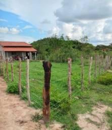 Vende-se um terreno na Cidade de Beneditinos PI