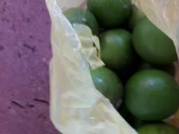 Limão taití 3.50