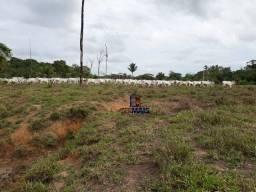 Fazenda à venda, por R$ 1.890.000 - Zona Rural - Monte Negro/RO
