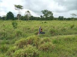 Sítio à venda, 1016400 m² por R$ 1.092.000,00 - Área Rural de Candeias do Jamari - Candeia