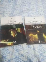 Dois livros excelentes