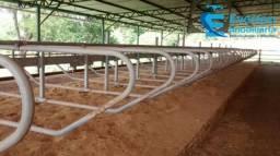 Linda Fazenda em Caldas Novas - GO