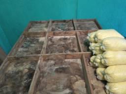 Vendo esses materiais para quem vende verduras e frutas