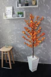 Plantas decorativas pro Natal, última tendência