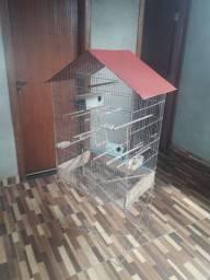 Gaiola pássaros