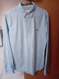 Camisa da lacoste original