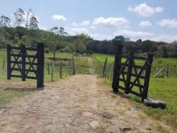 Fazenda cacau e gado Itabuna