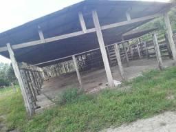 Excelente e linda fazenda em Santa Rita