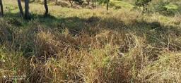 Chacara no município de Itapuranga-go