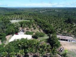 Fazenda à venda, 968000 m² por R$ 5.500.000,00 - Sauípe - Mata de São João/BA