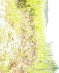 Vendo terreno 200 metro quadrado. Teofilo otoni
