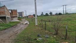 Título do anúncio: Vende-se terreno de 5x25 no bairro fernandes