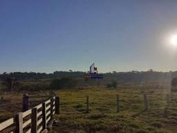 Sítio com 1 dormitório à venda, 1452000 m² por R$ 2.100.000 - Zona Rural - Machadinho D'Oe
