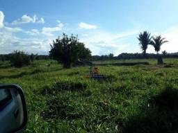 Sítio à venda, por R$ 3.600.000 - Zona Rural - Ariquemes/RO