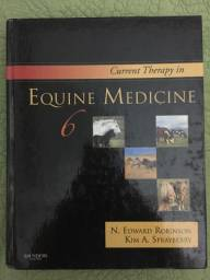 Corrent Therapy in Equine Medicine 6