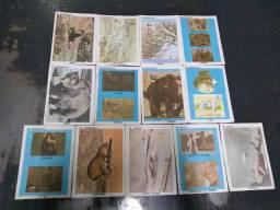 Cartão antigos que fala sobre animais