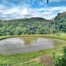 Fazenda 13,5 alqueires 16 km Luziania