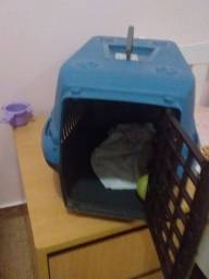 Casinha de cachorro port pequeno carrega ate. 8kg