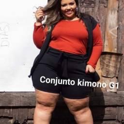 Roupas plus size feminina 46/56
