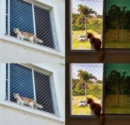 Gatos protegidos com telas