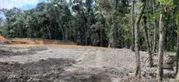 Terreno à venda, 2000 m² por R$ 85.000 - América de Baixo - Morretes/PR