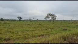 Fazenda com 1 dormitório à venda, por R$ 10.000.000 - Zona Rural - Pimenta Bueno/RO