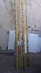 $10.00Varas de bambú para pesca