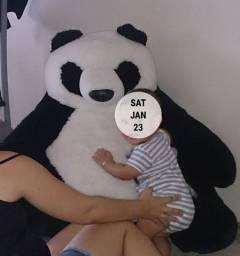 Urso Panda pelúcia grande