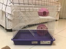 Gaiola hamster monaco lilás